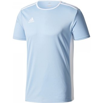 ee6f2b8d4e4 Picture of Adidas Entrada 18 Shirt Korte Mouw Kinderen - Hemelsblauw / Wit