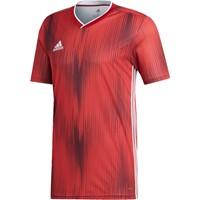 Adidas Tiro 19 Shirt Korte Mouw - Rood