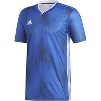 Adidas Tiro 19 Shirt Korte Mouw - Royal