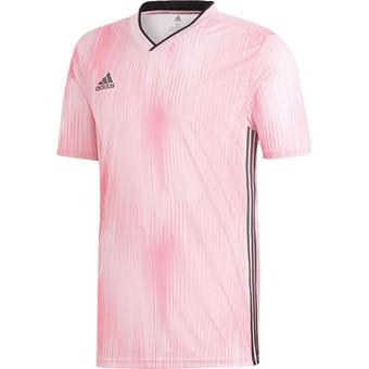 Picture of Adidas Tiro 19 Shirt Korte Mouw - Roze