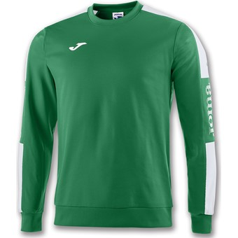 Picture of Joma Champion IV Sweater Kinderen - Groen / Wit
