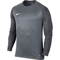 Nike Trophy III Voetbalshirt Lange Mouw - Cool Grey / Dark Grey