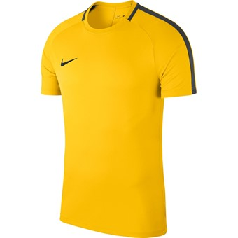 Picture of Nike Academy 18 T-shirt - Geel / Antraciet