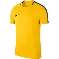 Nike Academy 18 T-shirt - Geel / Antraciet