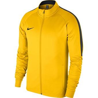 Picture of Nike Academy 18 Trainingsvest Kinderen - Geel / Antraciet