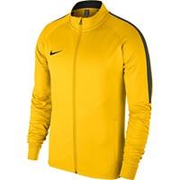 Nike Academy 18 Trainingsvest Kinderen - Geel / Antraciet
