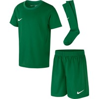 Nike Park Voetbaltenue Korte Mouw Kinderen - Groen