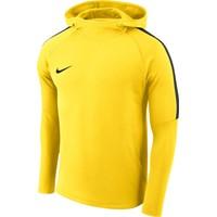 Nike Academy 18 Sweater Met Kap Kinderen - Geel / Antraciet