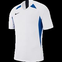 Nike Legend Shirt Korte Mouw Kinderen - Wit / Hemelsblauw