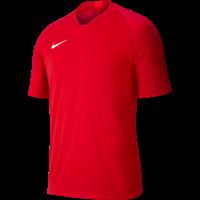 Nike Strike Shirt Korte Mouw Kinderen - Rood